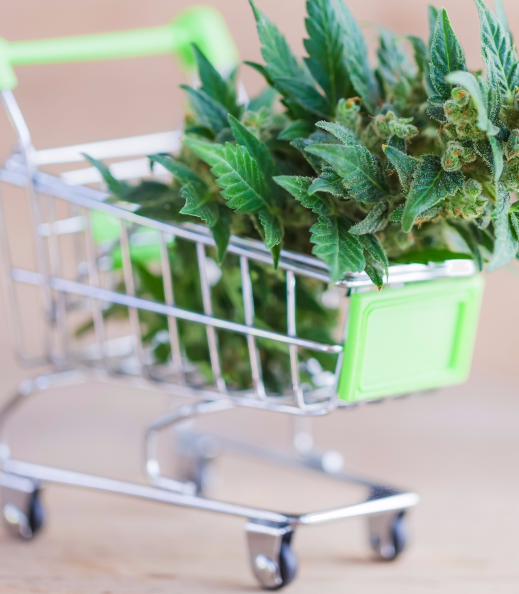 Shopping cart full of cannabis
