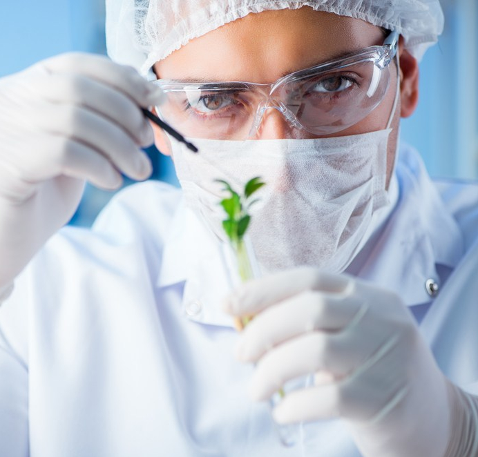 The FDA can ban chemicals but not plants